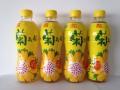 維他 菊花茶 500ml (24支/箱)
